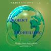 Hörbuch Cover: Projekt Erdheilung (Download)