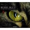 Hörbuch Cover: Ruhig Blut! (Download)