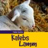 Hörbuch Cover: Kalebs Lamm (Download)