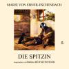 Hörbuch Cover: Die Spitzin (Download)